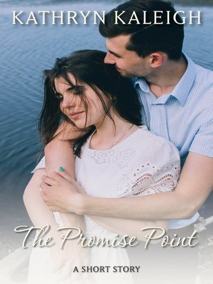 cover image of The Promise Point
