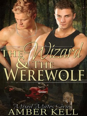 cover image of The Wizard and the Werewolf
