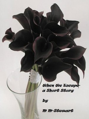 cover image of When We Escape- a Short Story