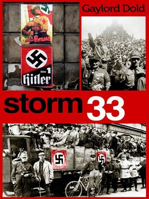 cover image of Storm 33