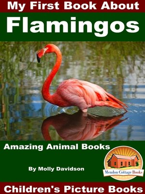 cover image of My First Book About Flamingos