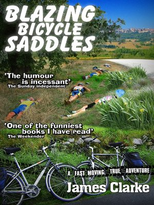 cover image of Blazing Bicycle Saddles