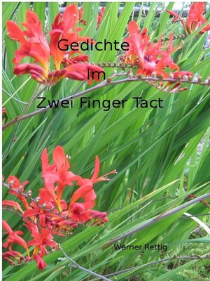cover image of Gedichte im zwei Finger Tact