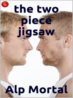 cover image of The Two Piece Jigsaw