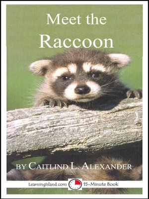 cover image of Meet the Raccoon