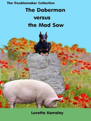 cover image of Hans and the Mad Sow