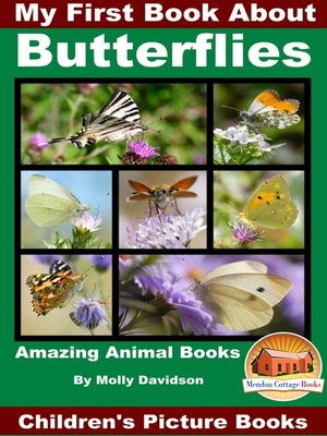 cover image of My First Book About Butterflies