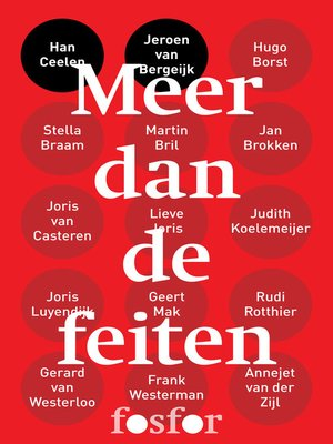 cover image of Meer dan de feiten