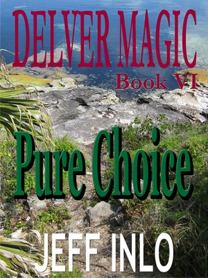 cover image of Delver Magic Book VI