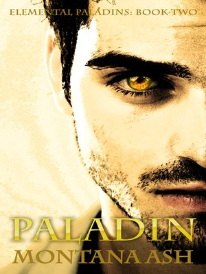 cover image of Paladin (Book Two of the Elemental Paladins series)