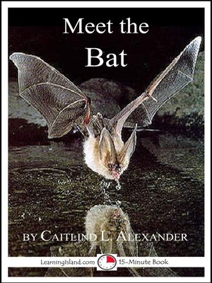 cover image of Meet the Bat