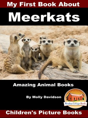 cover image of My First Book about Meerkats