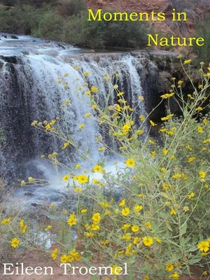 cover image of Moments in Nature