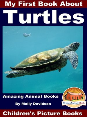 cover image of My First Book About Turtles