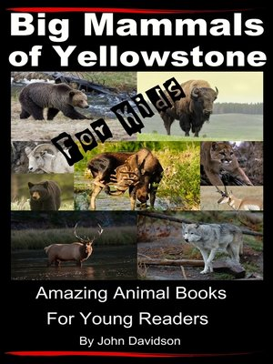 cover image of Big Mammals of Yellowstone For Kids