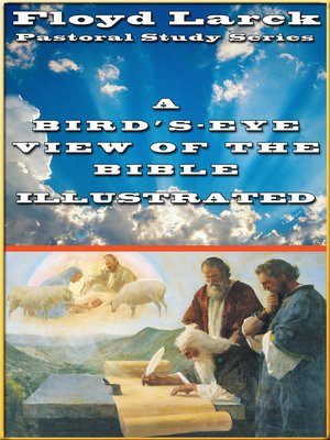 cover image of A Bird's-Eye View of the Bible Illustrated