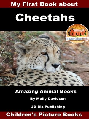 cover image of My First Book about Cheetahs