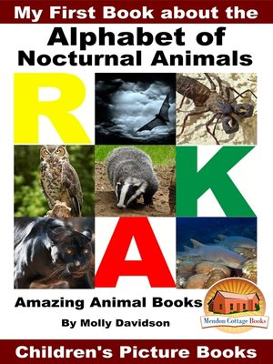 cover image of My First Book about the Alphabet of Nocturnal Animals