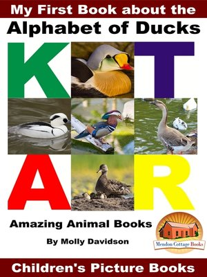 cover image of My First Book about the Alphabet of Ducks
