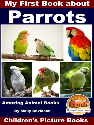 cover image of My First Book about Parrots