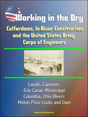 cover image of Working in the Dry