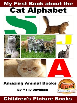 cover image of My First Book about the Cat Alphabet
