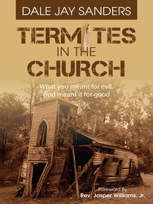 cover image of Termites in the Church