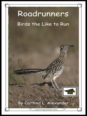 cover image of Roadrunners