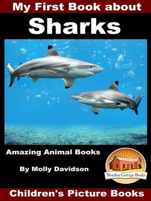 cover image of My First Book about Sharks