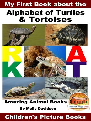 cover image of My First Book about the Alphabet of Turtles & Tortoises