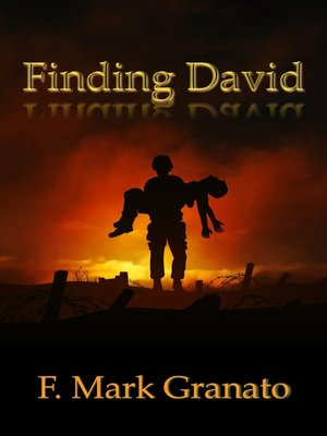 cover image of Finding David