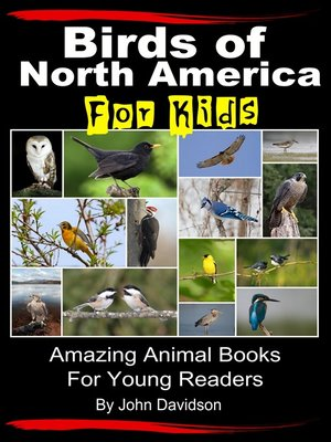 cover image of Birds of North America For Kids
