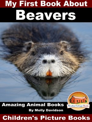 cover image of My First Book About Beavers