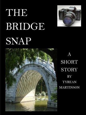 cover image of The Bridge Snap