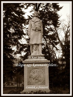 cover image of Elégia egy katonasír felett...