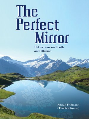 cover image of The Perfect Mirror