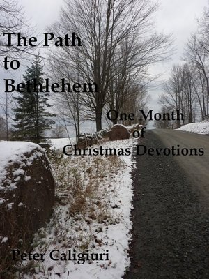 cover image of The Path to Bethlehem One Month of Christmas Devotions
