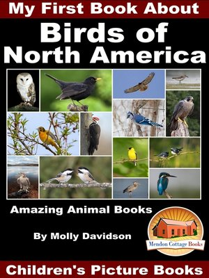 cover image of My First Book About the Birds of North America