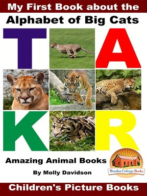 cover image of My First Book about the Alphabet of Big Cats