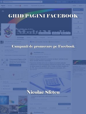 cover image of Ghid pagini Facebook