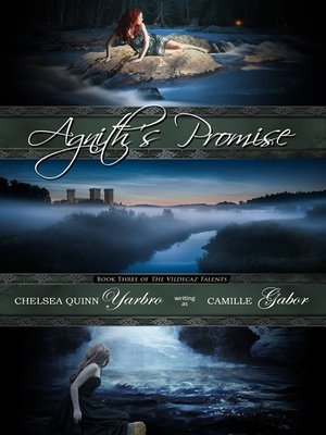 cover image of Agnith's Promise