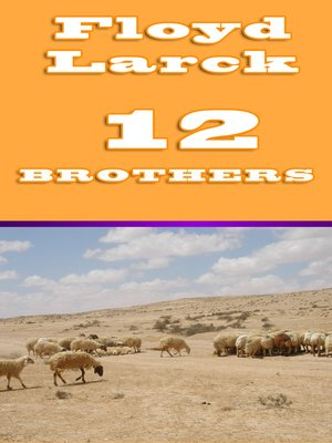 cover image of 12 Brothers