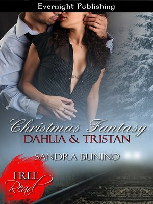 cover image of Christmas Fantasy