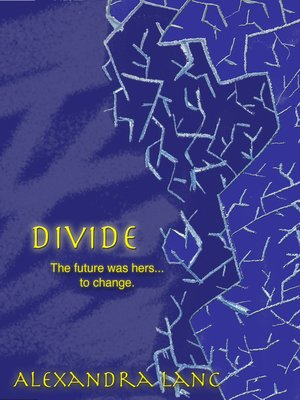 cover image of Divide