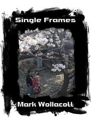 cover image of Single Frames