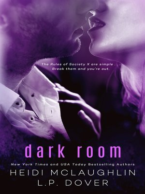 cover image of Dark Room