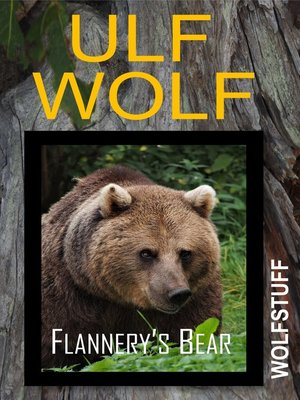 cover image of Flannery's Bear