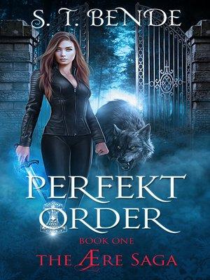 cover image of Perfekt Order (The Ære Saga Book 1)
