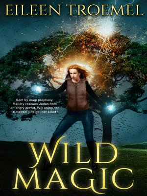 cover image of Wild Magic, no. 1