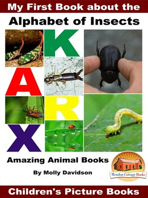 cover image of My First Book about the Alphabet of Insects
